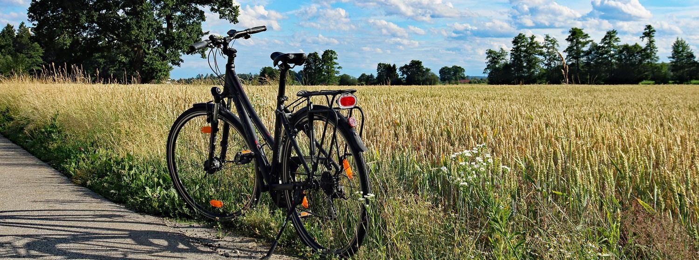 Les circuits cyclotouristiques et la Seine à Vélo  Les circuits vélo sont un bon moyen pour découvrir nos campagnes et ses vallées verdoyantes. Ainsi, 6 1