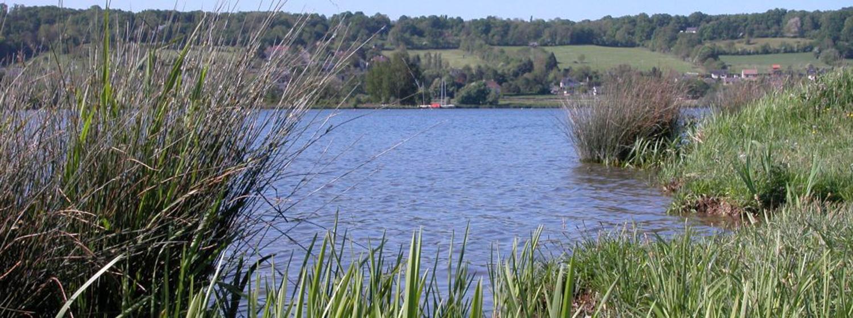 Le site des étangs À cheval sur les communes de Toutainville, Saint-Germain-Village et Pont-Audemer, le site des étangs est un espace naturel 1