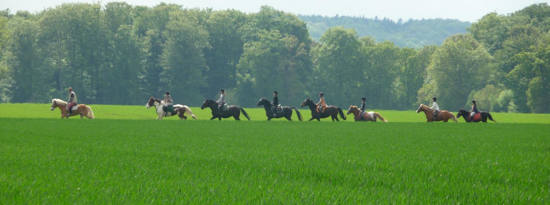 Centres équestres et balades en calèche Pont-Audemer et le Val de Risle se dévoilent à cheval !La vallée de la Risle, à l'image de toute la 1
