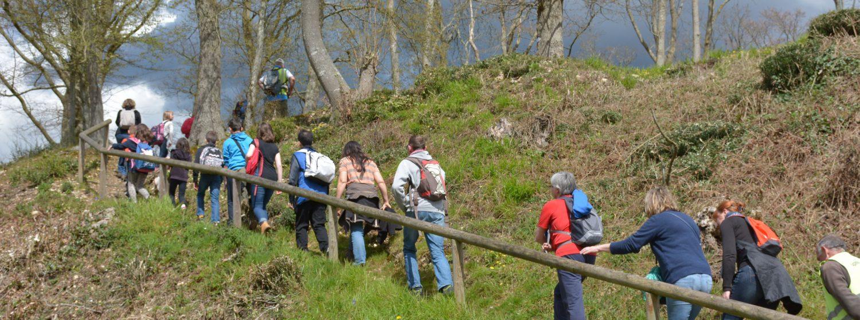 Les randonnées pédestres Paradis des randonneurs, à pied, à cheval ou en VTT, la vallée de la Risle, véritable mosaïque de parfums et de couleurs, 1